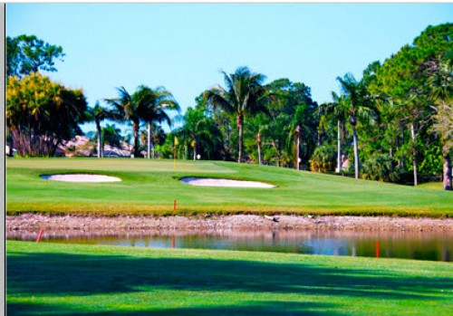 Royal Palm Naples FL