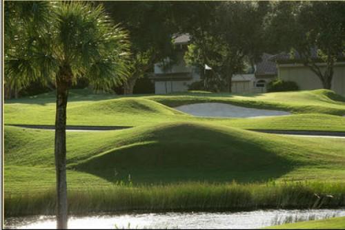 Pelican Marsh Golf Course