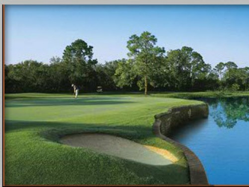 SWFL Golf Communties