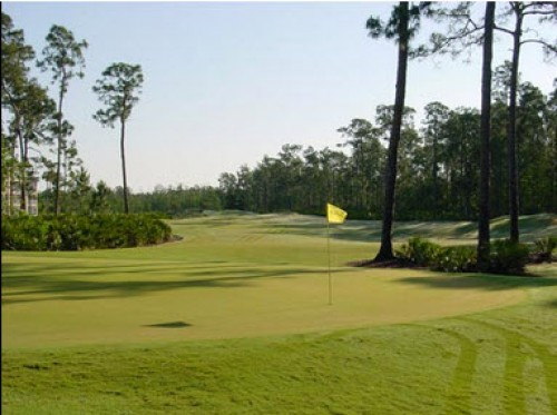 Cedar Hammock Golf And Country Club Naples Golf Homes