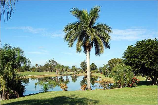 Hibiscus Golf Club Naples Florida
