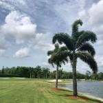 Royal Wood Golf Club