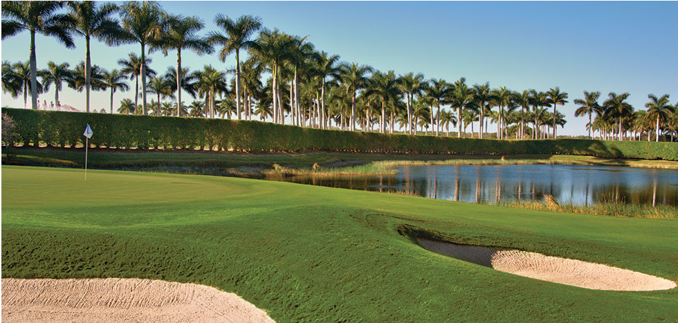 Miromar Lakes Beach And Golf Club Homes For Sale