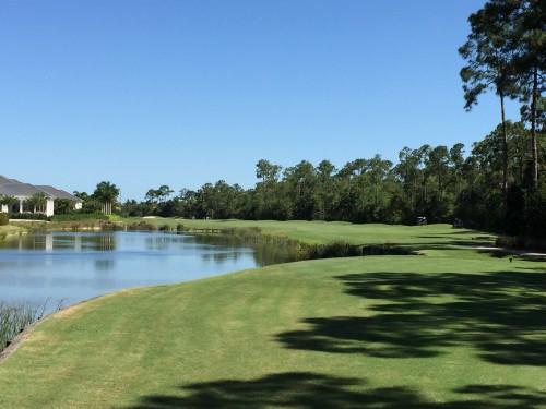 Grey Oaks Estuary Golf