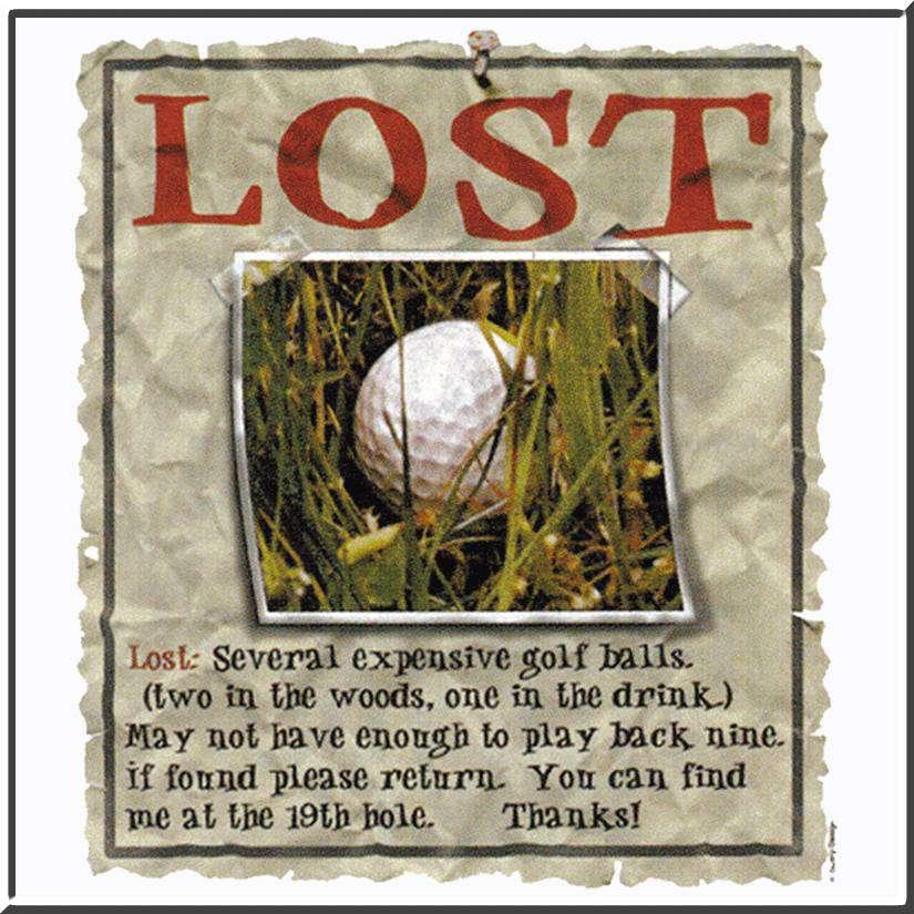 Lost Golf Balls Naples Golf Homes Naples Golf Guy