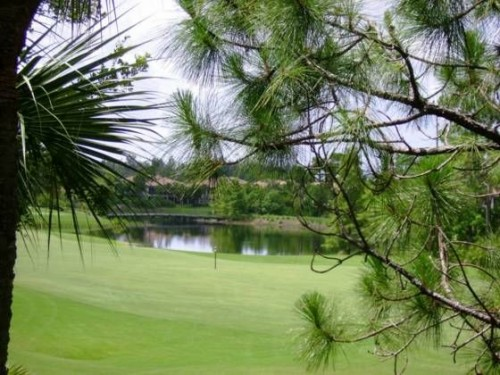 Pelican Sound Golf