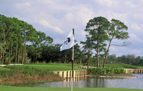 Shadow wood golf club