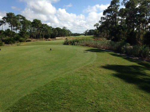 Naples Luxury Golf Communities