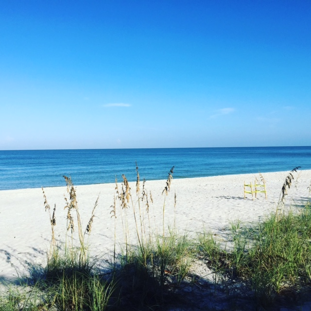 Image Result For Naples Beachel And Golf Club For Sale