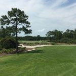 Old Collier Golf Club in Naples