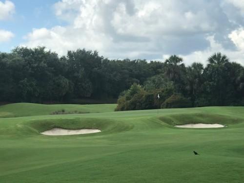 Renaissance golf course