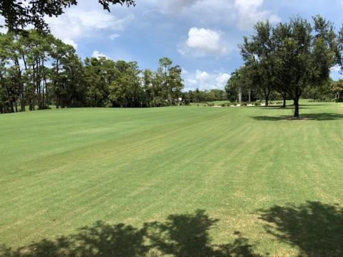 Wyndemere Golf