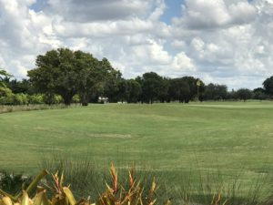 Public Country Clubs in Florida