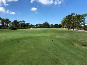 Bonita Springs Golf Community trends