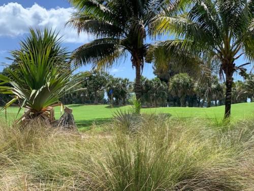 Public golf courses in Naples