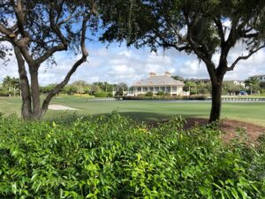 SWFL Country Club Real Estate
