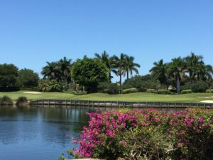 Real Estate Market Snapshot for Naples Golf Communities